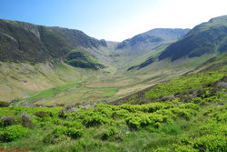 Photo 8 - Newlands Valley.