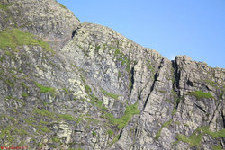 Photo 6 - Sharp Edge close-up.