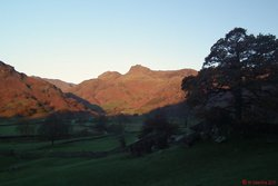 Langdale Pikes from Copt Howe.