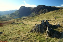 Harrison Stickle & Pavey Ark.