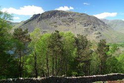 39 Yewbarrow from beside Fence Wood.jpg